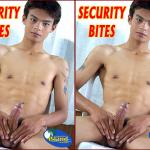 [ISLAND CAPRICE STUDIOS] SECURITY BITES