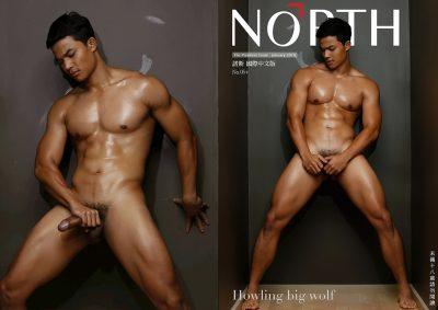 [PHOTO SET] NORTH 05+ – HOWLING BIG WOLF