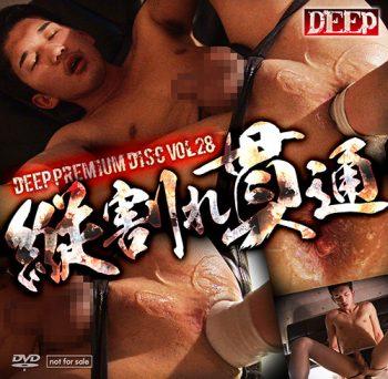 [KO DEEP] DEEP PREMIUM DISC 028 – 縦割れ貫通