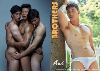 [PHOTO SET] BROTHERS VOL.6 – AUI