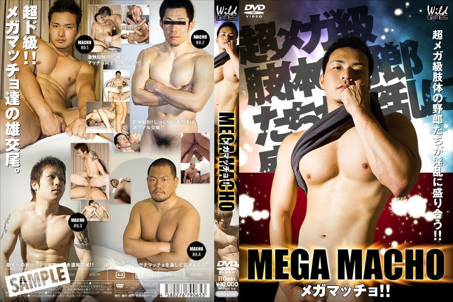 [G@MES wild] MEGA MACHO (メガマッチョ!)