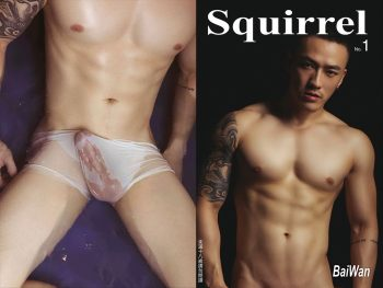 [PHOTO SET] SQUIRREL NO.1 – BAIWAN